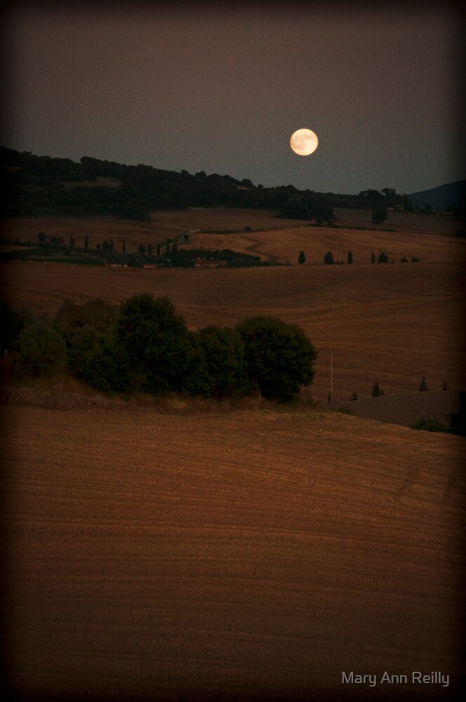 Moon Rise by Mary Ann Reilly