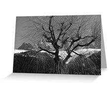 Chamonix Tree Greeting Card