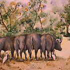 Buffalo sheltering by rentia