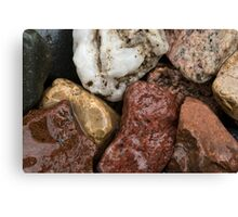 Wet Rocks Canvas Print