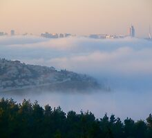 Morning fog by Moshe Cohen