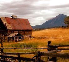 Old barn in Fall by Vendla