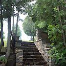 These Steps Of Stone by Rhonda Blais