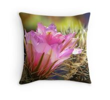 Springtime Pink Throw Pillow