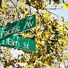Pacific & Elm by brittany m. photography