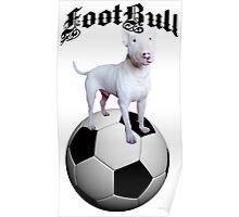 FootBull Poster