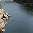 Upstream by Matthew Williams