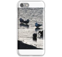Birds at Par Lake iPhone Case/Skin