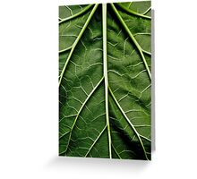 Rhubarb leaf Greeting Card