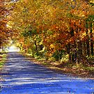 Country Roads in Autumn Colors by Ruth Lambert