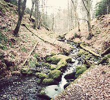 Vintage Stream by Mark Willson