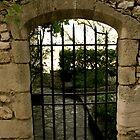 Provence 18 by mindfulmimi
