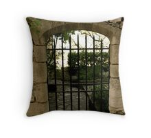 Provence 18 Throw Pillow