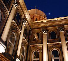 Castle under Moon Light by pangea