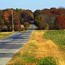 ***A COUNTRY ROAD & COUNTRY VIEWS!!