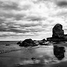 Reflections of stubbornness by clickinhistory