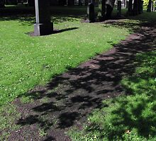 A flower carpeted path for the shadows by Hélène David-Cuny