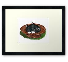 Nap in Straw Hat for Kitty and Mouse Framed Print