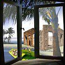 Vacation by Carolyn Venditto