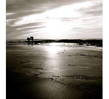 """Scavenger Hunt"" Photographic Print"