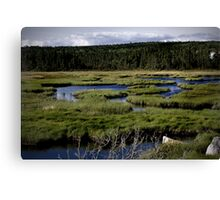Fields and Streams Canvas Print