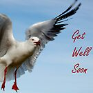 Get Well Soon by Eve Parry