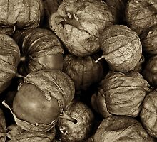 Green Tomatoes in Sepia by Jeffrey  Sinnock