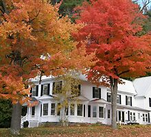 Old Maine Home in Fall by Judith Hayes