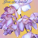 YOU ARE LOVED (CARD 2038) by Thomas Barker-Detwiler