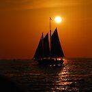 Evening Sail by Jonathan Sullivan