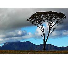 Stirling Range Photographic Print