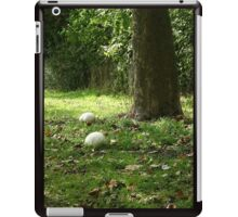 Giant Puff Balls iPad Case/Skin