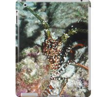 Spotted Spiny Lobster iPad Case/Skin