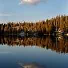Mirror Lake by Jonathan Parrish