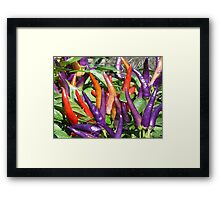 Color of Spice Framed Print