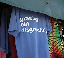 Growing Old Disgracefully by Margaret  Shark