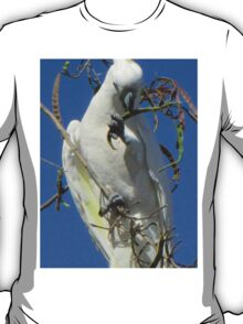 cocky in a tree T-Shirt