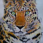 LEOPARD BRIGHT by goldylonglocks