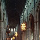 Domkirke Nave Uppsala Sweden 198406160062 by Fred Mitchell