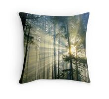 Behold The Light! Throw Pillow