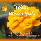 Hello, Beautiful! by Greeting Cards by Tracy DeVore