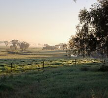 Frost  Fog and Winter sunshine by geoffgrattan
