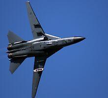 F-111 RAAF by Daniel McIntosh