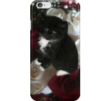 ADORABLE KITTENS AND ROSES,PILLOWS,TOTE BAG,SCARF,SKIRT,TRAVEL MUGS,TOTE BAG,ECT.. iPhone Case/Skin