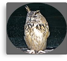 """""""Birds of prey"""" Canvas Print"""