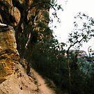 Wentworth Falls by Louise Marlborough