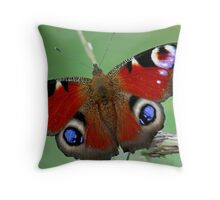 Sheer Beauty Throw Pillow