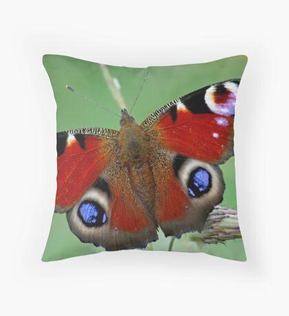 Sheer Beauty Throw Pillow