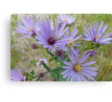 Light Purple Wildflowers Canvas Print