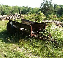 Rusty Farm Wagon by linmarie